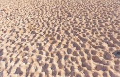 Fondo di fango asciutto Immagini Stock