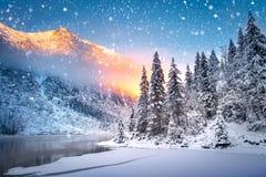 Fondo di festa di Natale di inverno fotografie stock libere da diritti