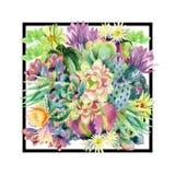 Fondo di fioritura del cactus dell'acquerello illustrazione vettoriale