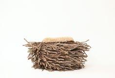 Fondo di fotografia digitale di Owl Nest Prop di legno immagini stock