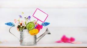 Fondo di giardinaggio con l'annaffiatoio, i fiori del giardino ed il segno di giardinaggio Fotografia Stock