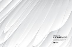 Fondo di Gray Curve Abstract, struttura bianca, carta da parati, superficie, insegna, modello della disposizione di progettazione illustrazione vettoriale