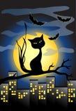 Fondo di Halloween con il gatto nero e la luna piena Fotografia Stock Libera da Diritti