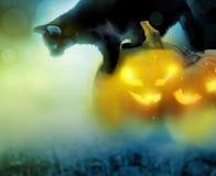 Fondo di Halloween con le zucche ed il gatto Fotografie Stock Libere da Diritti