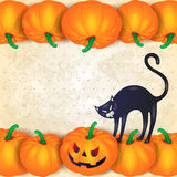 Fondo di Halloween con le zucche, il gatto nero e il copyspace Immagine Stock Libera da Diritti