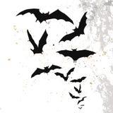 Fondo di Halloween con una luna piena ed i pipistrelli Immagine Stock