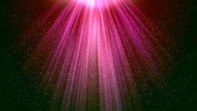 Fondo di HD Loopable con i raggi rosa piacevoli