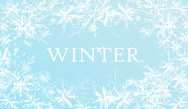 Fondo di inverno con i fiocchi di neve Fotografia Stock