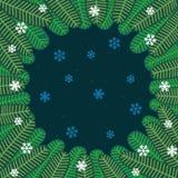 Fondo di inverno con i fiocchi di neve ed i rami dell'abete illustrazione vettoriale