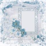 Fondo di inverno con la struttura della foto ed i fiori incantanti fotografie stock libere da diritti