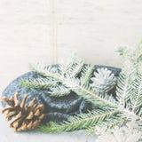 Fondo di inverno di Natale con i rami della neve quadrato Fotografie Stock Libere da Diritti