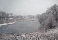 Fondo di inverno di Natale con neve e gli alberi Fotografie Stock Libere da Diritti