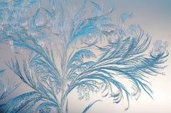 Fondo di inverno, gelo sulla finestra Immagine Stock Libera da Diritti