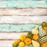 Fondo di legno Autumn Harvest della zucca Fotografie Stock Libere da Diritti