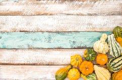 Fondo di legno Autumn Harvest Thanksgiving della zucca Fotografia Stock Libera da Diritti