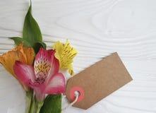 Fondo di legno bianco floreale di disposizione di estate della decorazione del fiore di Alstroemeria, fragilità della struttura Fotografia Stock Libera da Diritti