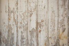 Fondo di legno bianco/grigio di struttura con i modelli naturali fotografia stock