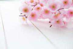 Fondo di legno con i fiori della molla Immagini Stock Libere da Diritti
