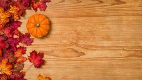 Fondo di legno con il fogliame di autunno e una zucca Immagine Stock