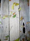 Fondo di legno con la foglia verde Fotografia Stock Libera da Diritti