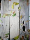 Fondo di legno con la foglia verde Fotografia Stock