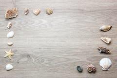 Fondo di legno con le conchiglie Immagini Stock
