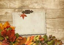 Fondo di legno d'annata con le decorazioni del card&autumn Immagini Stock Libere da Diritti