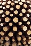Fondo di legno decorativo Fotografia Stock Libera da Diritti