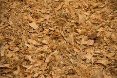 Fondo di legno dei trucioli Immagine Stock Libera da Diritti