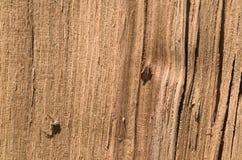 Fondo di legno del bordo di struttura Fotografia Stock