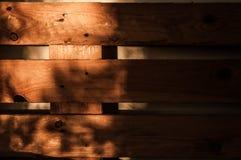 Fondo di legno del grano della plancia di struttura, coperto di luce solare Fotografia Stock