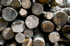 Fondo di legno del mucchio Immagine Stock Libera da Diritti