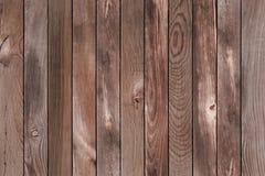 Fondo di legno del pino Fotografie Stock