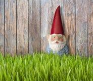 Fondo di legno dell'erba di Gnome Fotografia Stock Libera da Diritti