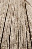 Fondo di legno dell'estratto di struttura Fotografie Stock