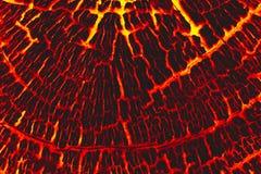 Fondo di legno dell'ustione della lava Fotografia Stock