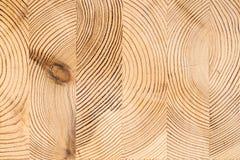 Fondo di legno della struttura Struttura di legno industriale del legname, timbe fotografie stock libere da diritti