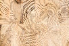 Fondo di legno della struttura Struttura di legno industriale del legname, timbe Immagini Stock Libere da Diritti