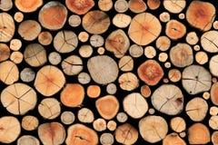 Fondo di legno delle mattonelle Immagini Stock
