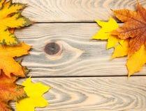 Fondo di legno di autunno fotografie stock libere da diritti
