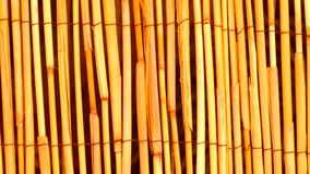 Fondo di legno di bambù giallo di struttura Fotografie Stock Libere da Diritti