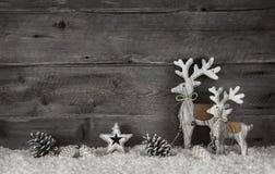 Fondo di legno di natale nello stile elegante misero nel grey e in whi Immagine Stock