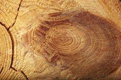 Fondo di legno di struttura con i nodi e le crepe Fotografia Stock Libera da Diritti