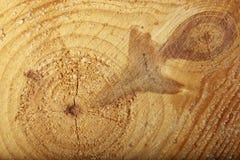 Fondo di legno di struttura con i nodi e le crepe Fotografie Stock
