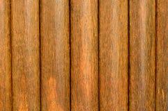 Fondo di legno di struttura della palma da zucchero Immagini Stock Libere da Diritti
