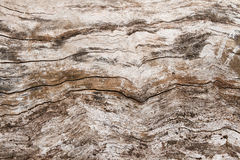 Fondo di legno di struttura di lerciume d'annata astratto Fotografia Stock Libera da Diritti