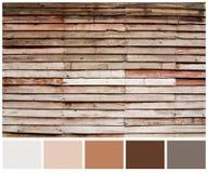 Fondo di legno di struttura di marrone della plancia con la guida della tavolozza colorata Immagine Stock Libera da Diritti