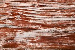 Fondo di legno di struttura, vecchio bordo di legno del grano Fotografia Stock