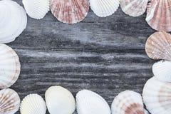 Fondo di legno di tema della spiaggia Fotografia Stock