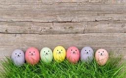 Fondo di legno divertente dell'erba verde delle uova di Pasqua dei bannies Fotografia Stock Libera da Diritti